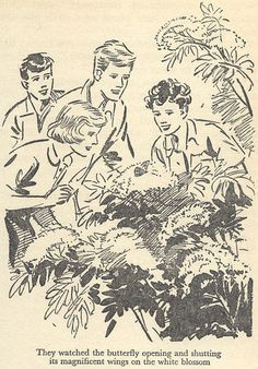 Five Go to Billycock Hill by Enid Blyton, illustration by Eileen A. Funny Retirement Gifts, Retirement Ideas, Retirement Cards, Funny Gifts, Enid Blyton Books, Native Child, Children's Book Illustration, Illustration Styles, Vintage Children's Books