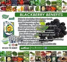 Aim Global whatsapp for orders Blackberry Benefits, Brocolli, Global Business, Health Benefits, Wealth, Health And Wellness, Cancer, Presentation, Natural