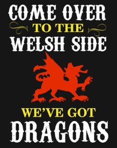 We've got dragons! Learn Welsh, Welsh Language, Welsh Gifts, North Wales, Wales Uk, Welsh Dragon, Got Dragons, Anglesey, Cymru