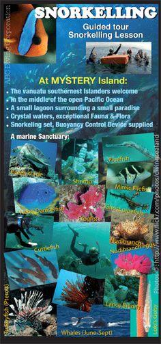 Mystery Island Vanuatu South Pacific, Pacific Ocean, Mystery Island Vanuatu, Pacific Cruise, Carnival Spirit, Cruise Holidays, Cruise Port, Snorkelling, Marshall Islands