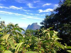 Vista da pedra da Gávea - Trilha do Morro Dois Irmãos RJ