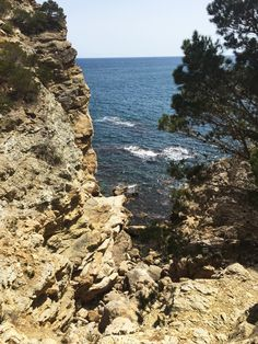 l'estartit, spain Amazing Adventures, Walking In Nature, All Over The World, Walks, Places Ive Been, Wild Flowers, Costa, Spanish, Explore