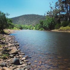 Paradise Valley Camping Ground – Peaceful camping grounds just outside Glenmaggie, Victoria. First Time Camping, Camping Set, Holiday Park, Family Holiday, Paradise Valley, Animal Party, Campsite, Caravan, Photo Credit