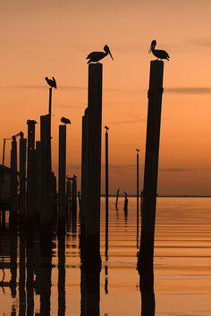 St. Simons Island, Georgia ... This isn't so far away.