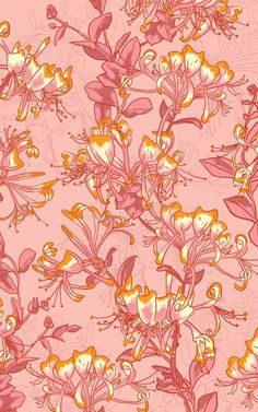 Honeysuckle pattern for stationery, gift wrap, fabric, textiles, wallpaper Pattern Designs, Surface Pattern Design, Pattern Recognition, Beautiful Patterns, Floral Prints, Stationery, Gift Wrapping, Textiles, Wallpaper