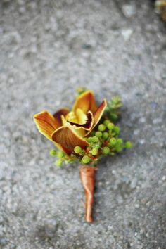 Blooms blog