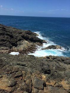 Camino a la cueva, por las Cabezas De San Juan, Fajardo, PR