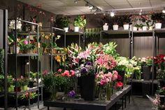 Floral Shop Layouts | visit myfleurjourney blogspot com