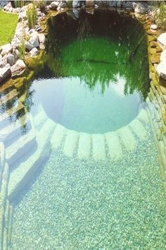 Having a pool sounds awesome especially if you are working with the best backyard pool landscaping ideas there is. How you design a proper backyard with a pool matters. Natural Swimming Ponds, Natural Pond, Swimming Pools Backyard, Ponds Backyard, Pool Landscaping, Lap Pools, Indoor Pools, Pool Decks, Piscine Diy