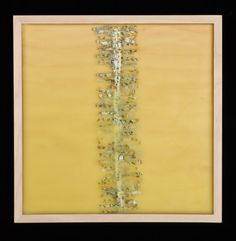 """Spines, poured 5625, Spines embedded in encaustic paint, mounted on recessed panel, 12"""" x 12"""" x 2"""", 2008"""