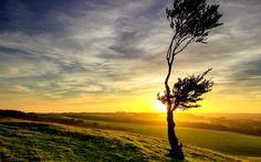 Beautiful Dawn Images6