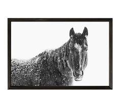 "Snowy Black Horse by Jennifer Meyers, 28 x 42"", Ridged Distressed, Black, No Mat"