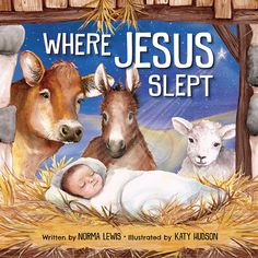 Title: Where Jesus Slept Author: Norma Lewis Illustrator: Katy Hudson Publisher: Worthy Kids Pages: 32 ISBN: Publi. Christmas Gift Guide, Christmas Books, Christmas Jesus, Christmas Baby, Vintage Christmas, Childrens Christmas, Childrens Books, Jesus Is Risen, Jesus Loves