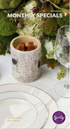 Scentsy RIver Birch Warmer of the Month for December 2014. Available 12/1/14. www.dohare.scentsy.us