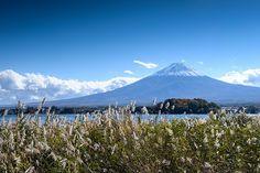 Fuji late autumn