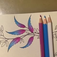 Jardim Secreto Inspire @jardimsecretoinspire Instagram profile - Pikore Secret Garden Coloring Book, Colouring Techniques, Drawing Techniques, Johanna Basford Coloring Book, Colored Pencil Techniques, Coloring Tutorial, Polychromos, Color Pencil Art, Coloured Pencils