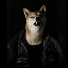Menswear Dog- eric northman