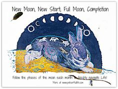 New Moon, New Start...follow the cycles of nature to live in the moment.