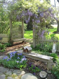 Love the fence, the bench, and the birdhouse. The blue flowers are beautiful.