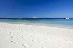 Cruise Excursion on the Best Beach in Roatan