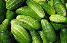Does Cucumber For Breast Enlargement Works? Cucumber Canning, Cucumber Recipes, Veggie Recipes, Cucumber Yogurt, Cucumber Juice, Eat Seasonal, Vitamin K