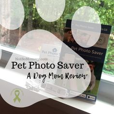 Recently, Gracie--fellow pet lover & dog mom--reached out, asking if I'd like to try out the Pet Photo Saver. Because I love taking photos of my fur baby, I eagerly accepted the offer to write a Dog Mom Review about this new product! | Read my full Dog Mom Review at Not So Mommy..., an infertility, childless, dog mom blog. | Dog Mom | Dog Moms | Dog Mommy | Dog Mom Blog | Dog Mom Blogs | Pet Photo Saver | Pet Photo | Pet Photos | Digital Photo Saver | Digital Photo Savers | Pet Photo Savers Cute Puppy Photos, Pet Photos, Love Photos, Baby Photos, Digital Photo Album, Pet Memorials, Mom Blogs, Dog Mom, Fur Babies