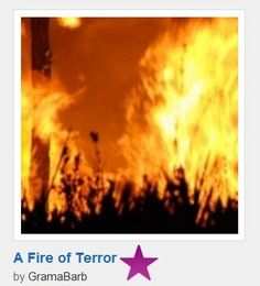 Conflagration of Terror in Our Valley   True story and a Purple star winner