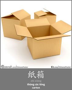 纸箱 - zhǐ xiāng - thùng carton - carton