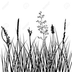 Silhouettes of flowers and grass vector image on VectorStock Learn To Draw Flowers, Grass Vector, Calligraphy Doodles, Watercolor Postcard, Monochrome, Family Painting, Photo Images, Stencil Templates, Illustration