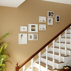 Picture Frame Sets, Wood Picture Frames, Picture On Wood, Picture Shelves, Change Picture, 10 Picture, White Photo Frames, Traditional Frames, Wall Collage