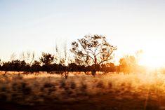Road Trip - Outback Sunrise - The Northern Territory - Australia - Photography by Kara Rosenlund