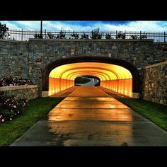 i want to live at marist forever. My Campus, Walk This Way, Walkway, Pride, Sidewalk, College, York, Beautiful, Runway