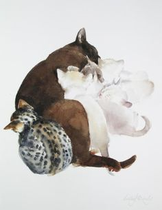 Cat, her kittens and a friend,Lesley Fotherby.