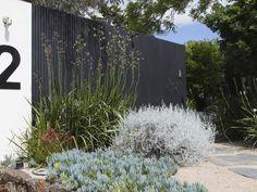 contemporary australian garden design - Google Search