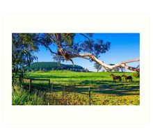 Horses Glancing at Mount Franklin Art Print
