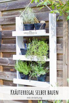 Dieses Kräuterregal könnt ihr ganz einfach selber bauen. Mit meiner Schritt für Schritt Anleitung habt ihr ganz fix ein praktisches Holzregal für eure Kräuter oder Deko auf dem Balkon, der Terasse oder im Garten. Das kleine Holzregal kann aber auch prima in der Küche einen Platz finden. Das DIY Kräuterregal ist perfekt für kleine Kräutertöpfe. Für mehr INfos klickt euch zu meinem Blog. Dort findet ihr alle Maße und Materialien um das tolle Regal zu bauen. Diy Greenhouse, Kraut, Outdoor Structures, Blog, Outdoor Decor, Plants, Home Decor, Inspiration, Jewelry Making