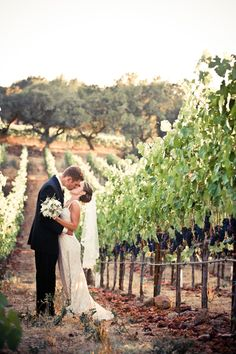 Winery wedding! Just a signature away from this being a reality!