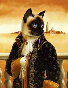 Коты и кошки аристократы. | 31 фотография Quatro Patas, Siamese Cats, Cats And Kittens, Cat People, Pet Clothes, Beautiful Cats, Cute Cats, Fancy Cats, Cat Fun