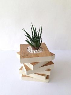 """39 Captivating Wood Succulent Planter Ideas Of Unused Wood Succulents are perfect plants for dry gardens and are easy to root and grow. Once you learn how easy it […]""""}, """"http_status"""": window. Wooden Projects, Wooden Crafts, Diy And Crafts, Diy Projects, Wooden Planters, Planter Boxes, Planter Ideas, Bois Diy, Perfect Plants"""