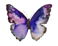 blue violet Butterfly papillon art print - 14 x 11 inch archival fine art print watercolor from courtneyoquist on Etsy. Watercolor Butterfly Tattoo, Butterfly Painting, Butterfly Art, Butterfly Tattoos, Butterflies, Purple Butterfly, Watercolor Animals, Watercolor Paintings, Watercolor Paper