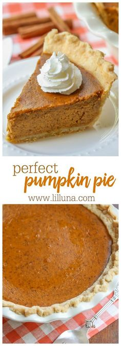 Not only is this homemade pumpkin pie incredibly easy - it's the most moist flavorful all around perfect pumpkin pie! Made from canned pumpkin seasonal spices and evaporated milk this pie is a must have dessert during the holidays. Homemade Pumpkin Pie, Pumpkin Pie Recipes, Pumpkin Spice, Canned Pumpkin, Homemade Pies, Vegan Pumpkin, Holiday Desserts, Just Desserts, Holiday Recipes