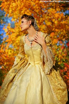 tapestry&silk; rococo gown