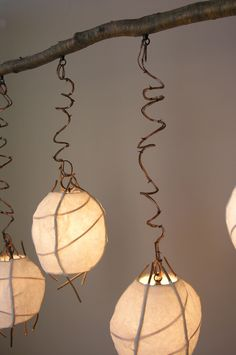 Pod Chandelier / Birch  Willow Studio