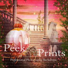 8ft.x8ft. Pink Princess Castle & Carriage Vinyl by PeekPrints