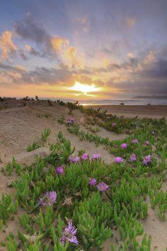 Sunset at Grover Beach, California_ USA
