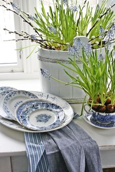 Dutch blue and white dishes