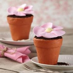 Big Blossom Mini Flower Pot Cakes - Wilton flower pot pan, cake covered in candy melts.