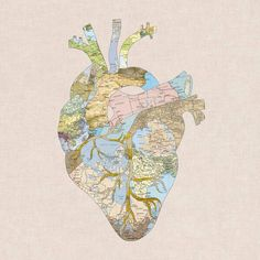 La terra nel cuore