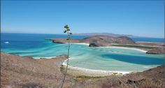 soo beautiful and quiet!! Balandra beach in Baja California Sur in northwestern Mexico! #LoveMexico  #IwannagotoMexico   http://gotomexico.co.uk/