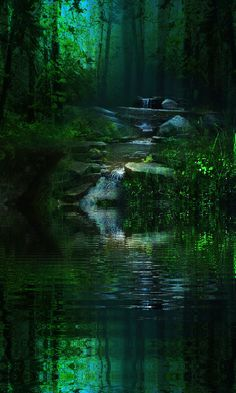 Streams in the Woods